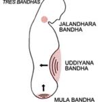 Œuf de jade et pratique yoga